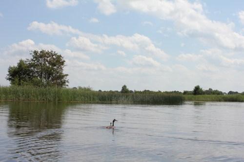 Giethoorn_MS_van_den_Heuvel_Bootverhuur-0061