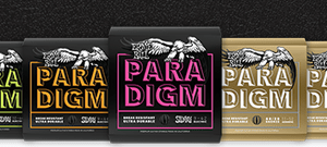 Ernie Ball Paradigm Strings