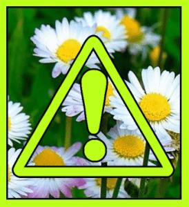 Dangerous Deals >>> Spring Clean Edition