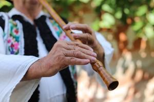 Gheorghe Tugui - Culorile Romaniei