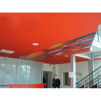 bottazzi_painting_ceiling_public_art_2