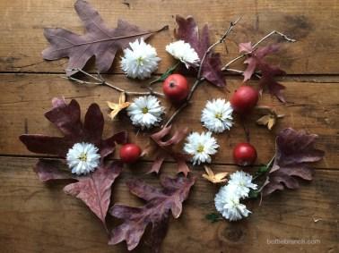 crabapples and oak leaves bottle branch blog