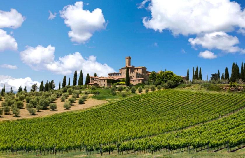 Castello Banfi, Cristina Mariana-May, Weingut, Toskana, Italien, Brunello, Sangiovese, Wein, Bottled Grapes