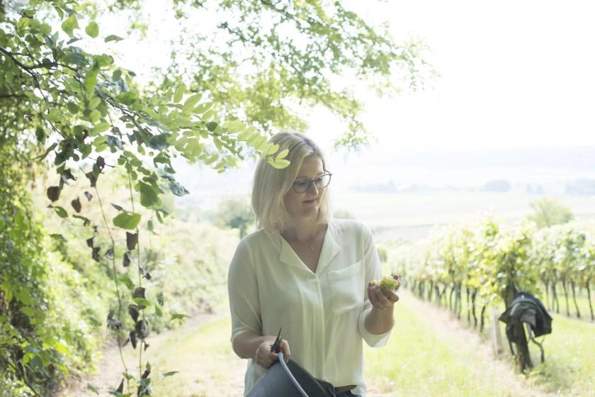 Winzerin prüft mit kritischem Blick Weißweintrauben in ihrer Hand