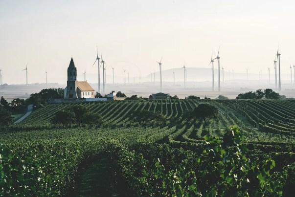 Blick auf die Landschaft im österreichischen Carnuntum