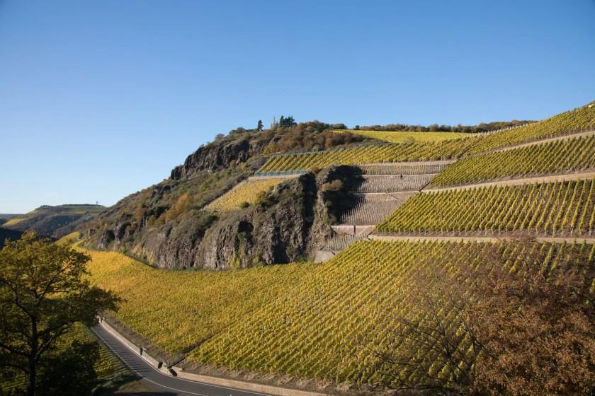 Blick auf die Weinberge von Gut Hermannsberg an der Nahe