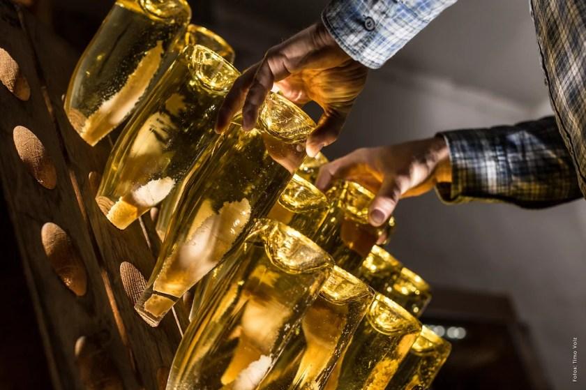 Sektflaschen werden auf einem Rüttelpult gedreht.