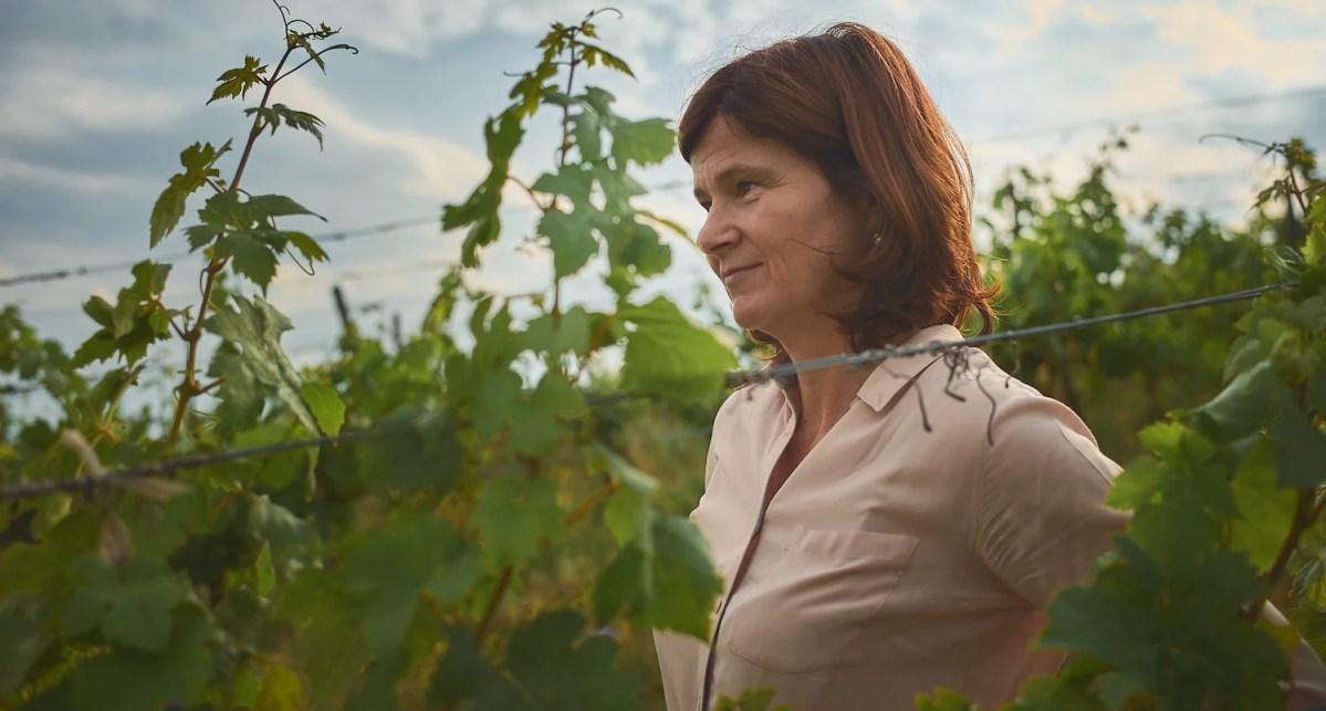 Weingut Birgit Braunstein: Ganzheitliches aus dem Burgenland