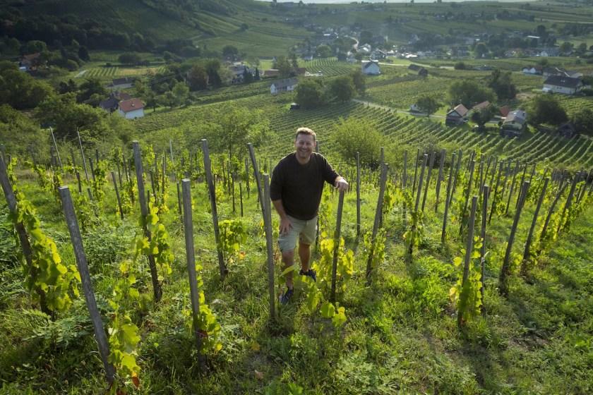 Winzer Uwe Schiefer in einem steilen Weingarten am Eisenberg im Burgenland