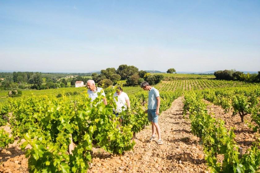 Die Winzer vom Weingut La Durbane im Weingarten
