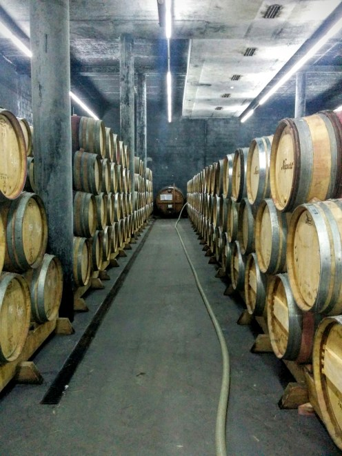 Niepoort Napoles barrel cellar