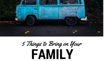5 Things You Need for Your Next Family Roadtrip