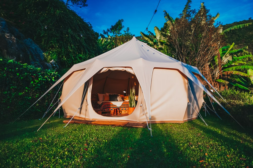 Tent in the backyard