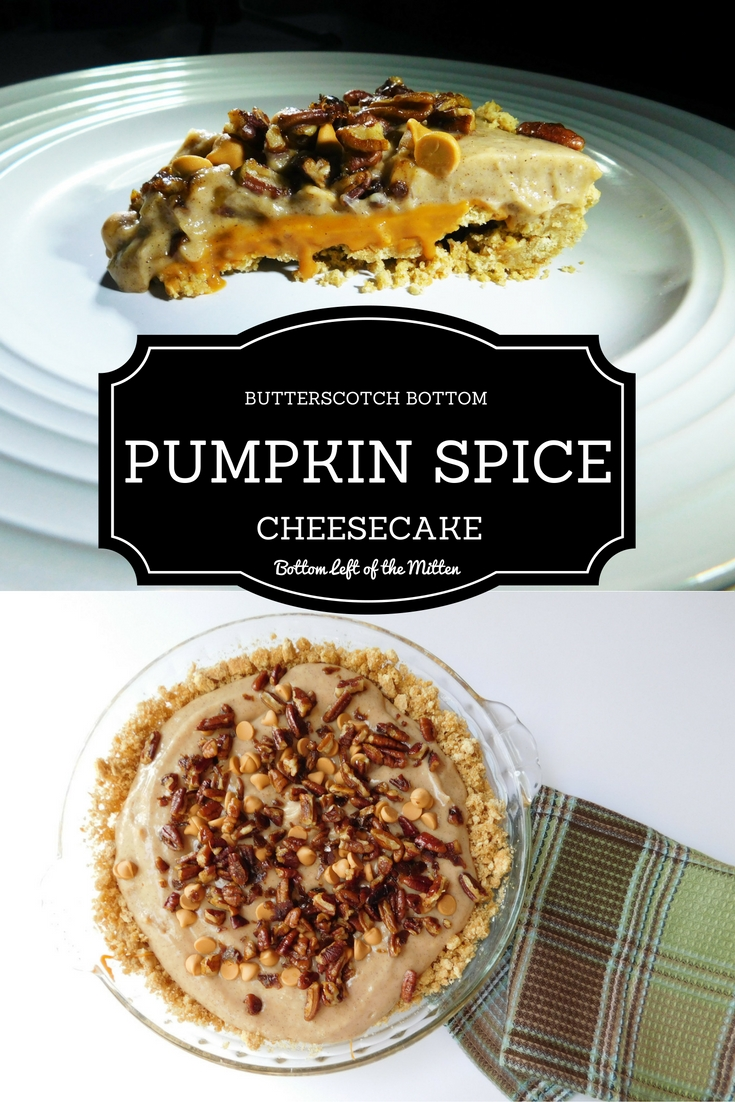 Introducing my Butterscotch Bottom Pumpkin Spice Cheesecake! Graham cracker crust is layered with butterscotch, pumpkin spice cheesecake filling then topped with candied pecans. A quick no-bake dessert that is perfect for Fall from Bottom Left of the Mitten