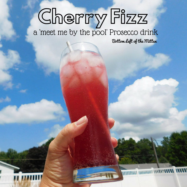 Cherry Fizz | Bottom Left of the Mitten