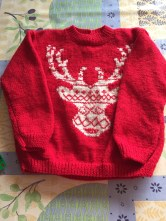 Pull2 ans renne