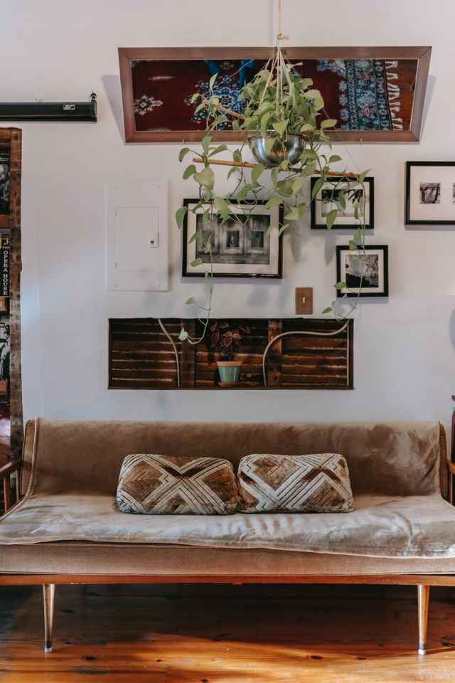 comfortable couch in cozy living room decorated with plant and framed pictures
