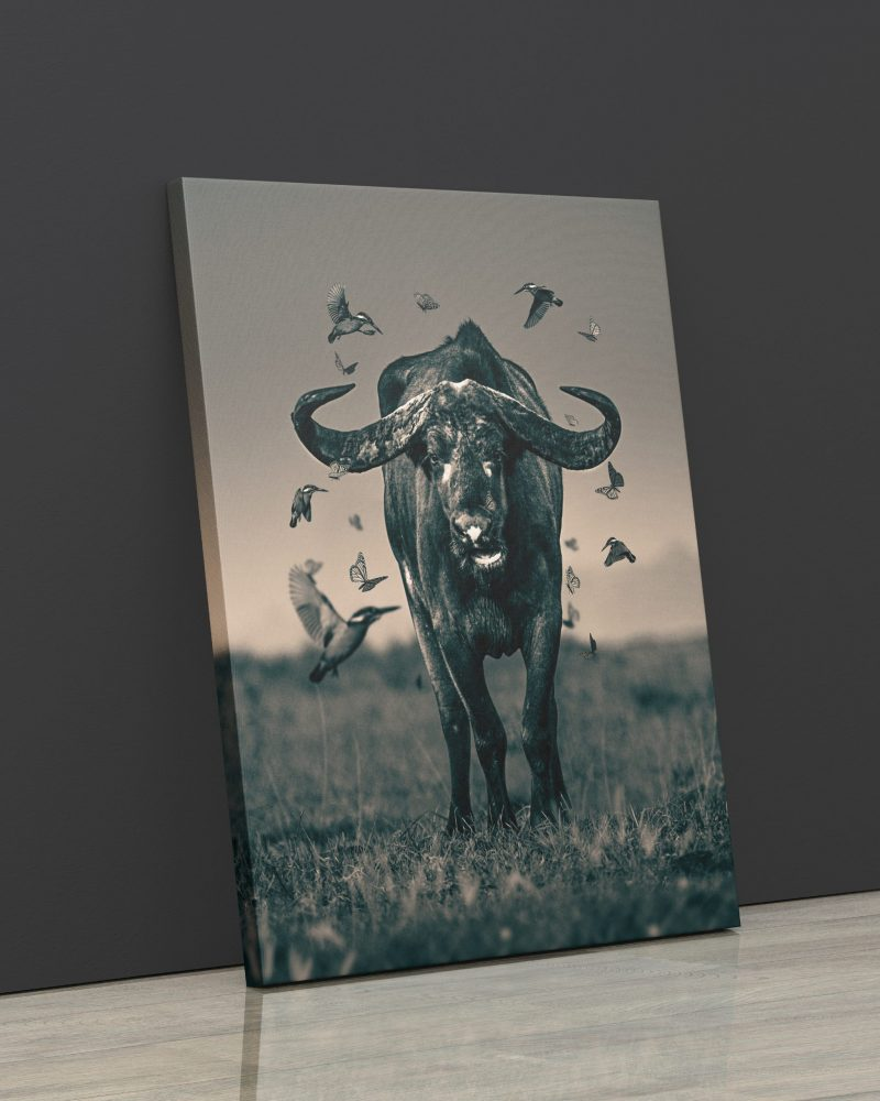 Buffalo with butterflies and birds