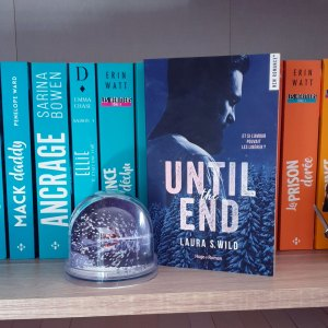 Until the end - Laura S. Wild