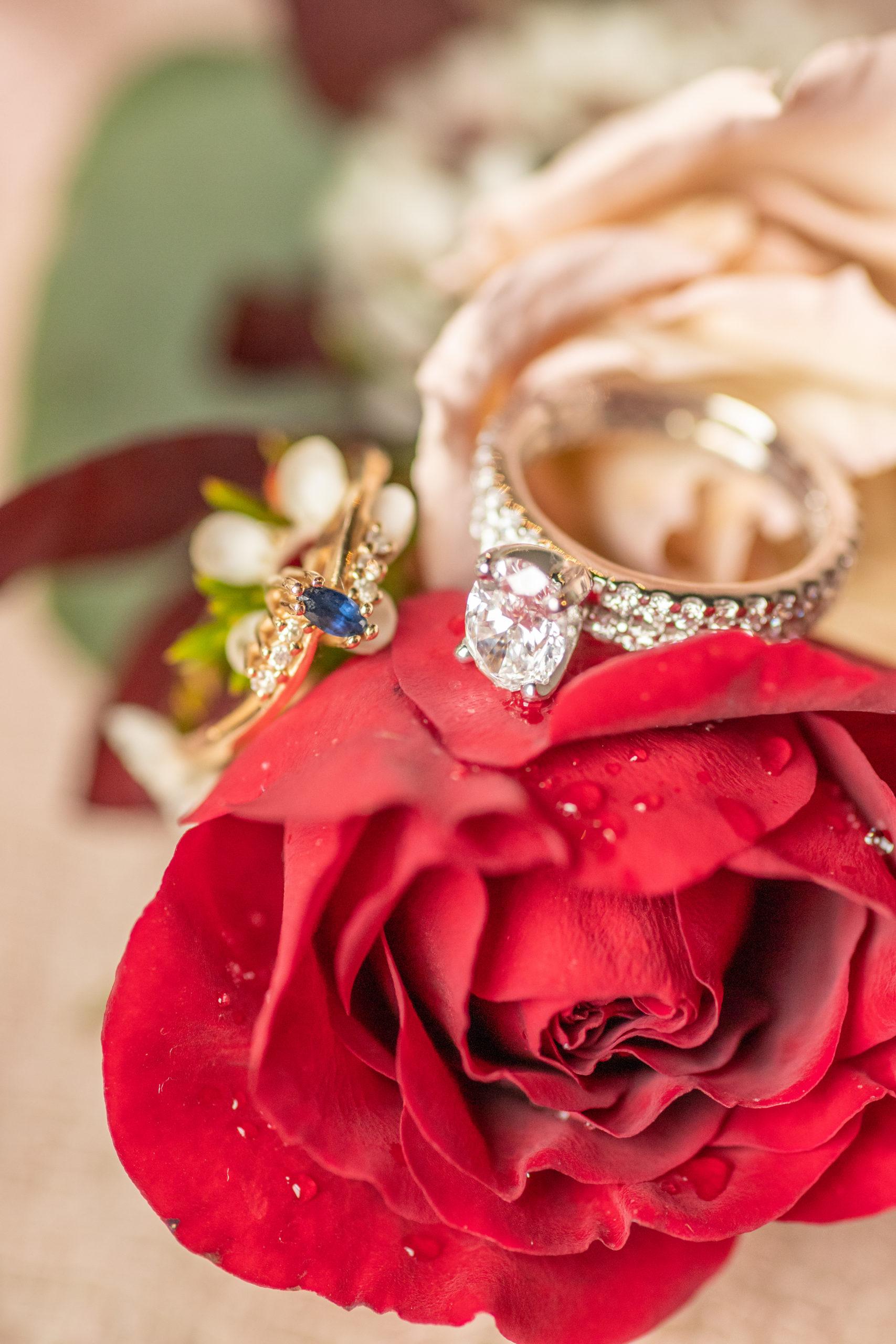 wedding rings, red rose, bride's ring set