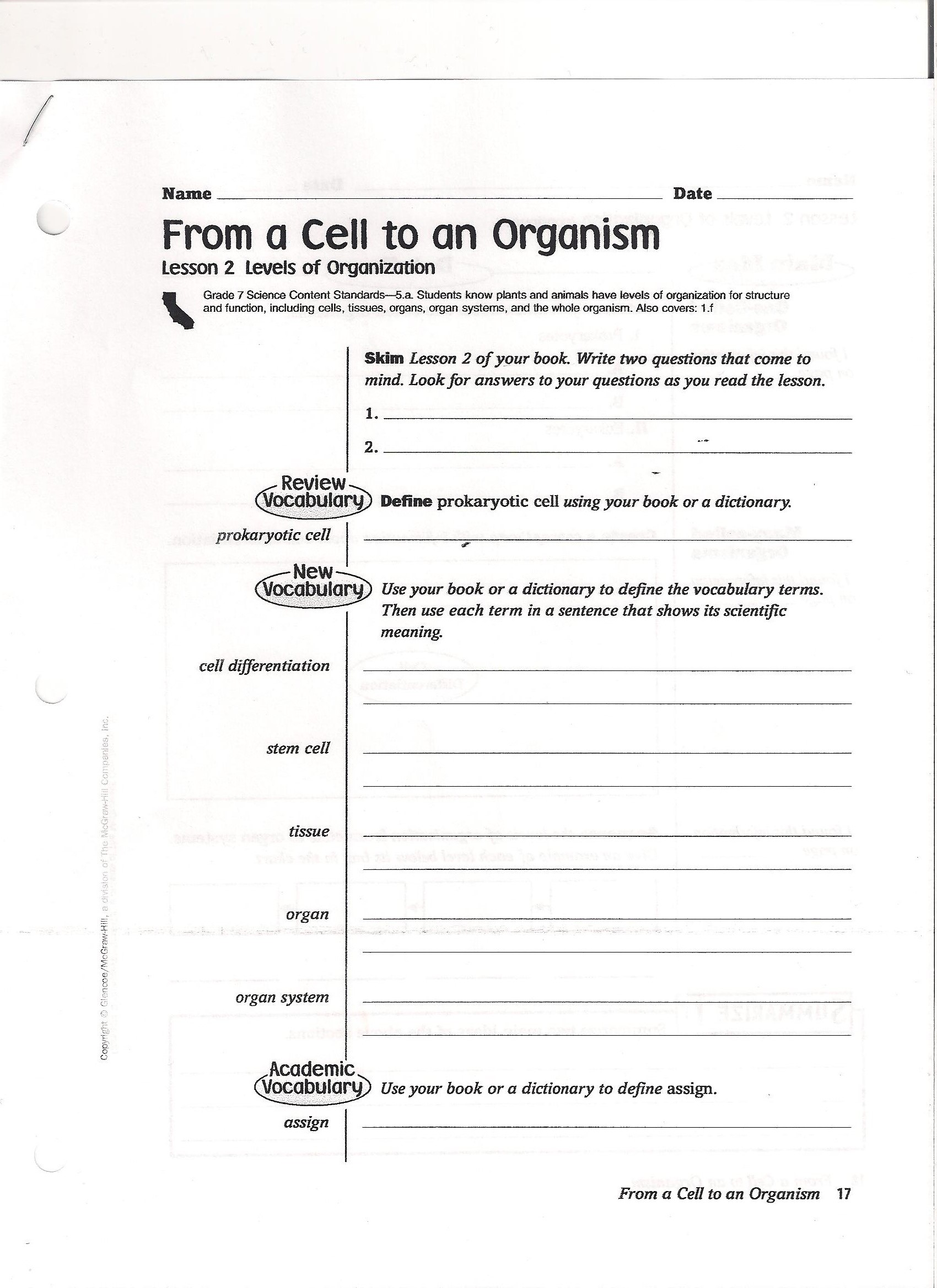 Introduction To Cells Worksheet Answers
