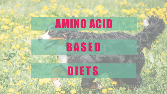 Amino Acid Based Diets and The Itchy Dog