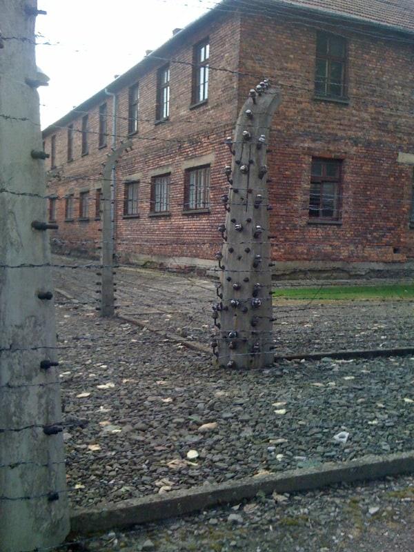 At Auschwitz