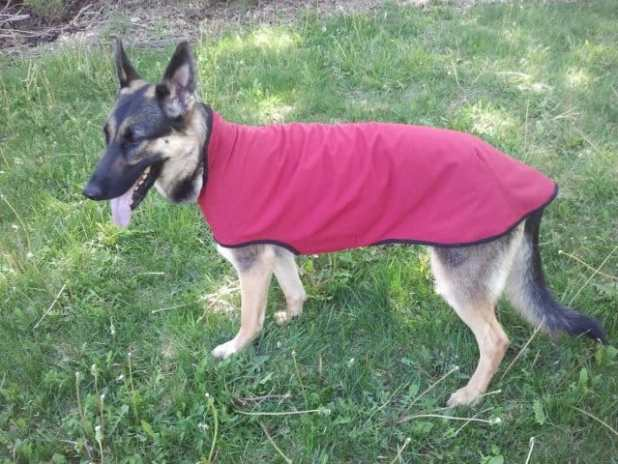Mountain Mutt Dog Coats