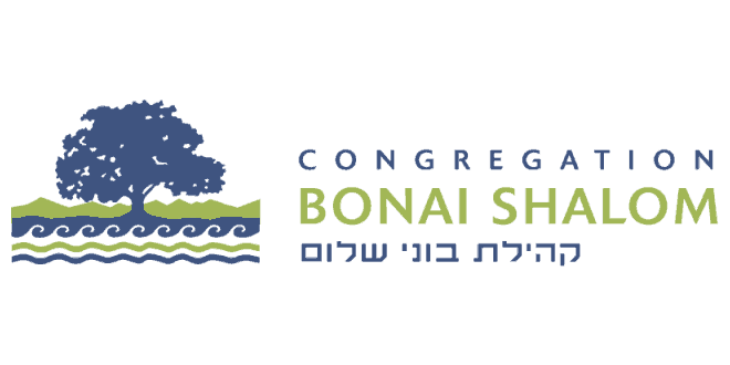 Hazon's CEO Nigel Savage at Bonai Shalom this Shabbat