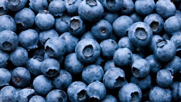 Blueberry-powders-shows-endothelial-benefits-Human-data_strict_xxl
