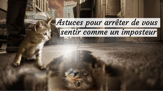 chat lion miroir syndrome de l'imposteur solution