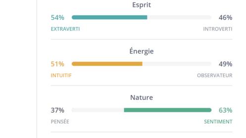 Extraverti introverti intuitif observateur MBTI
