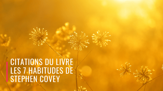 citations les 7 habitudes