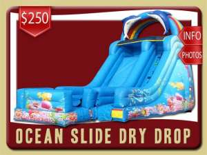Ocean Drop Dry Slide Rental, Inflatable, Fish, Colal, Sea, Mermaid, Dolphin, Blue, Ranbow