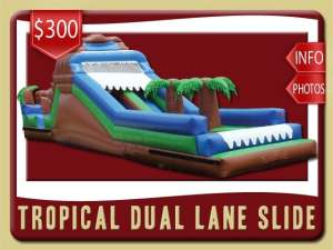 Tropical Dual Lane Water Slide Rental, Inflatable, Palm Trees, Blue, Green, Brown