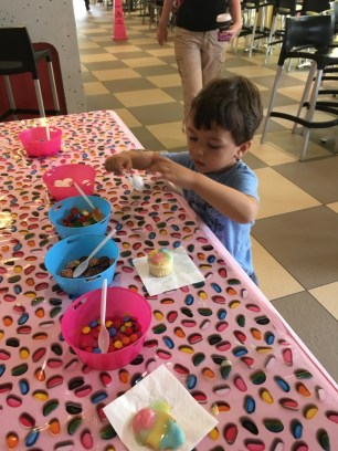 Cupcake & Biscuit Decorating $3pp