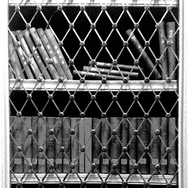 Playfair Library Shelves