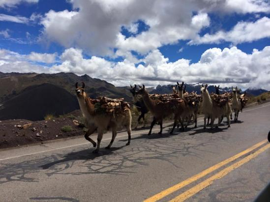 Peru traffic near Machu Picchu