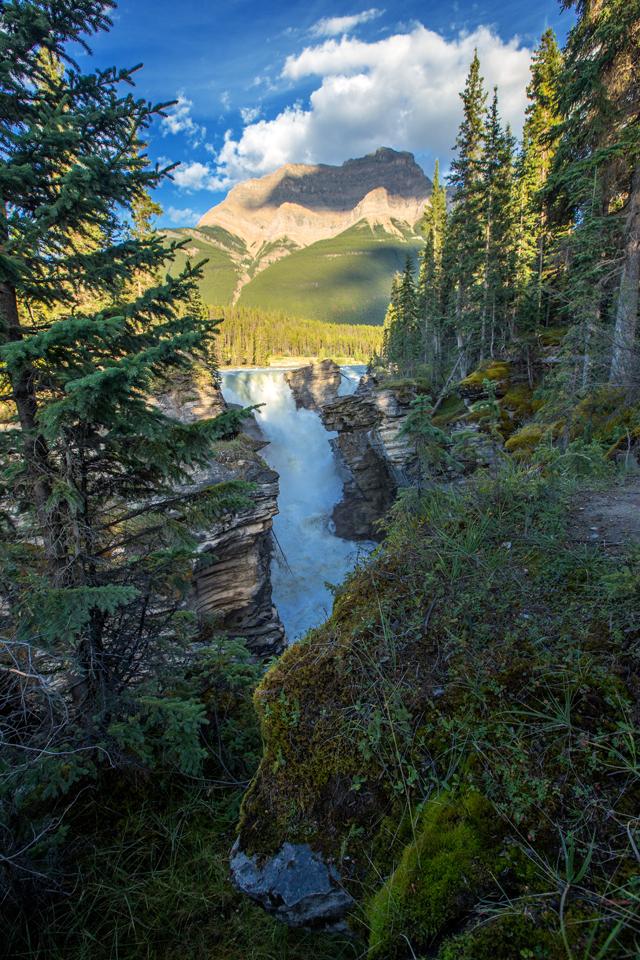 athabasca-falls-jasper