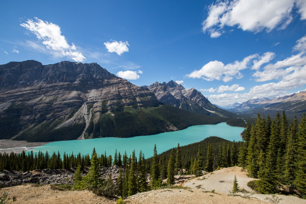 icefields-parkway-peyto-lake
