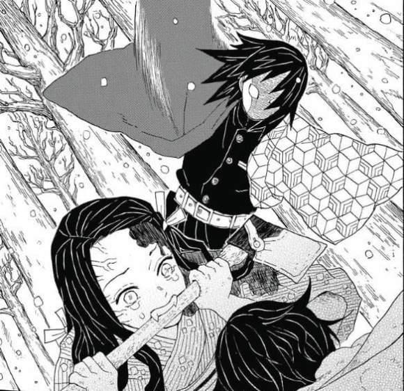 Demon Slayer (Kimetsu no yaiba)