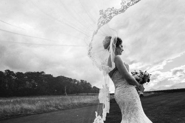 Bryn Eisteddfod wedding 92