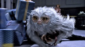 fantastic-beasts-demiguise-featured