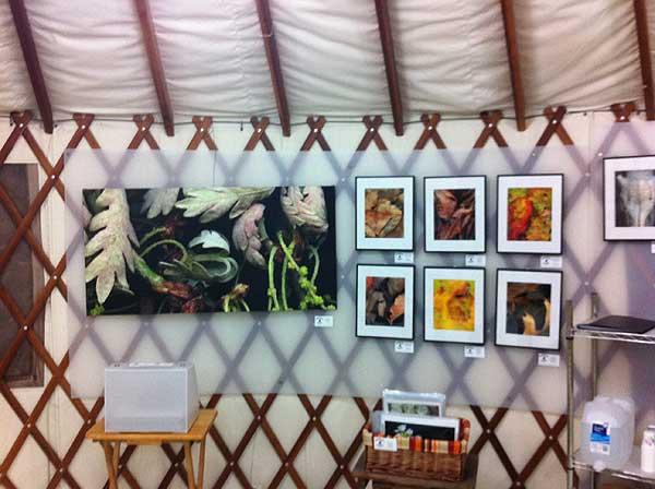 Art in yurt