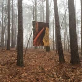 Braque Banner in fog