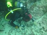 Nicholas looking for miniature sea life