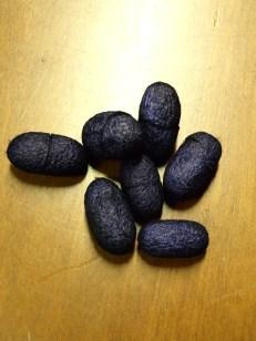 Κουκούλια Μπλε Μαύρο 20τεμ 6Ε
