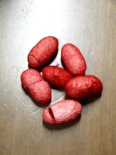 Κουκούλια Κόκκινα 20τεμ 6Ε