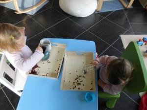 Pédagogie Montessori : premiers transvasements