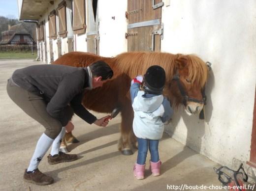 Sortie à poney
